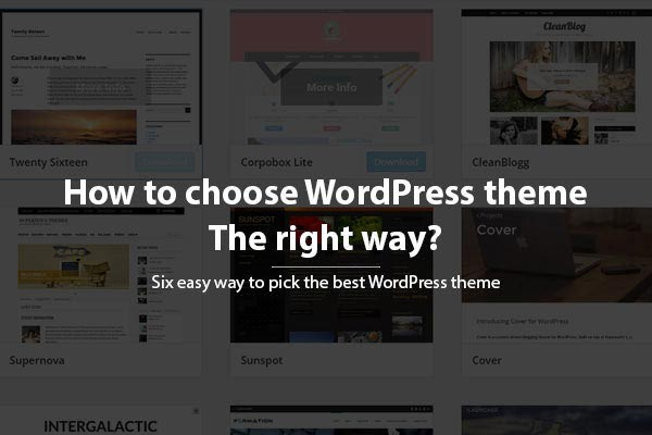 How to Choose a WordPress Theme for your Website - the Right Way